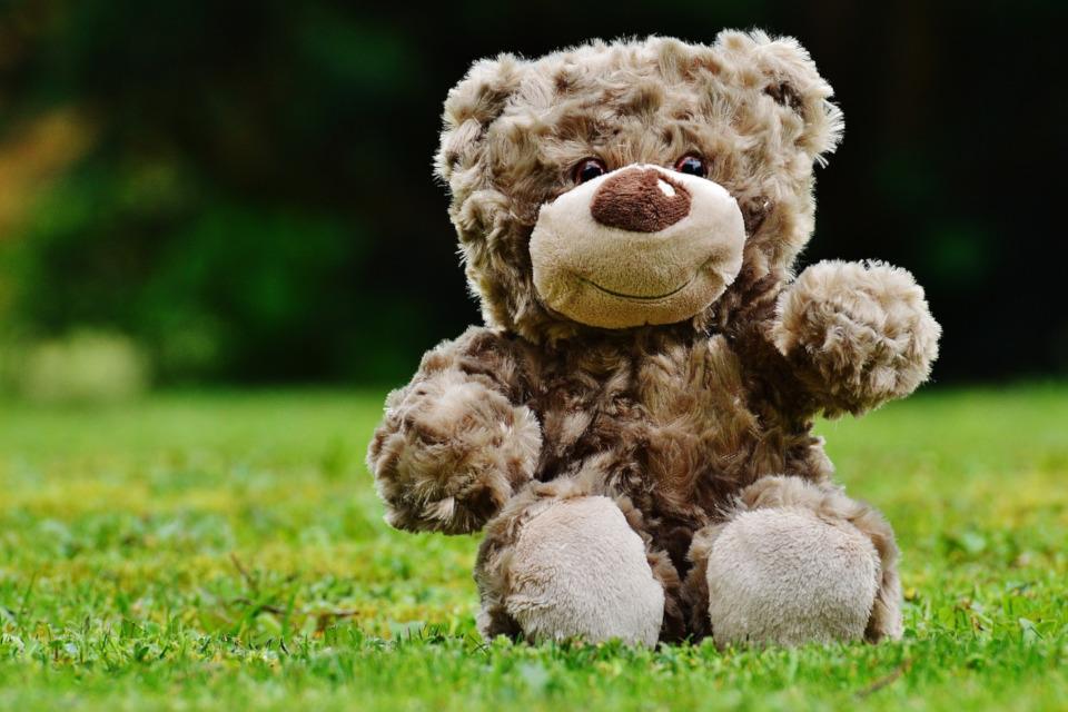 Teddy schadstofffrei