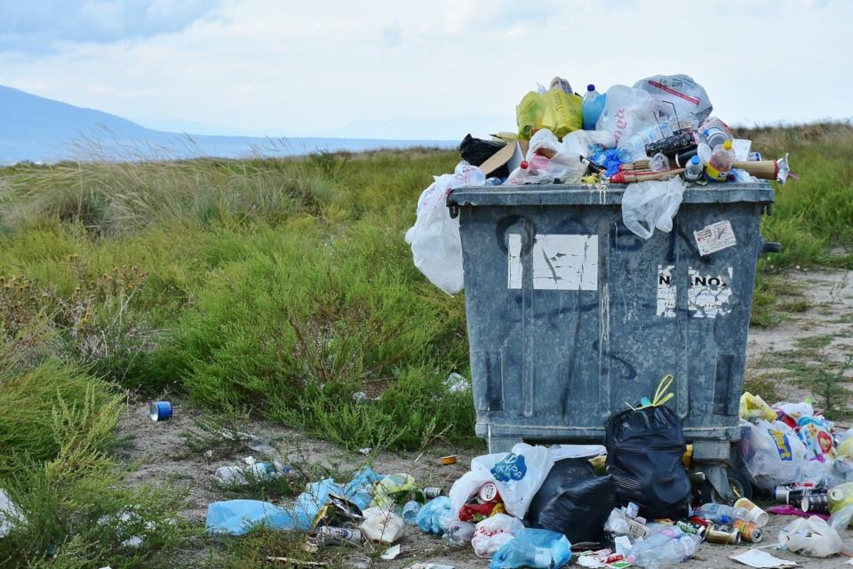 Plastikfrei einkaufen - Der Umwelt zu liebe sich entscheiden