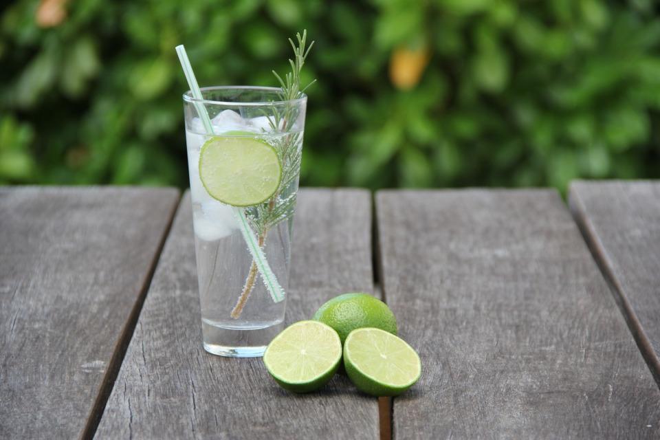 Tonic ohne Zucker ist gesund und erfrischt im Sommer.