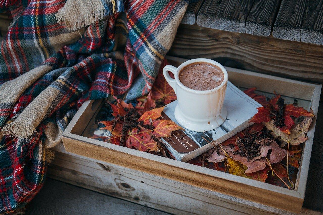 Laktosefreier Kakao – Sind die Produkte wirklich laktosefrei?